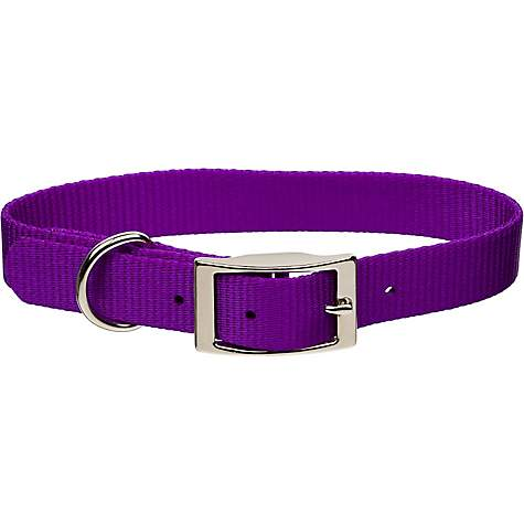 Coastal Pet Metal Buckle Nylon Personalized Dog Collar in Purple, 3/4