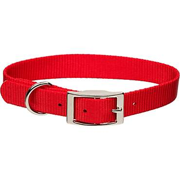 Coastal Pet Metal Buckle Nylon Personalized Dog Collar in Red, 5/8