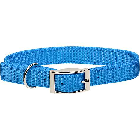 Coastal Pet Metal Buckle Double Ply Nylon Personalized Dog Collar in Light Blue