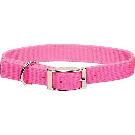 Coastal Pet Metal Buckle Double Ply Nylon Personalized Dog Collar in Neon Pink