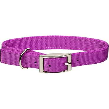 Coastal Pet Metal Buckle Double Ply Nylon Personalized Dog Collar in Orchid