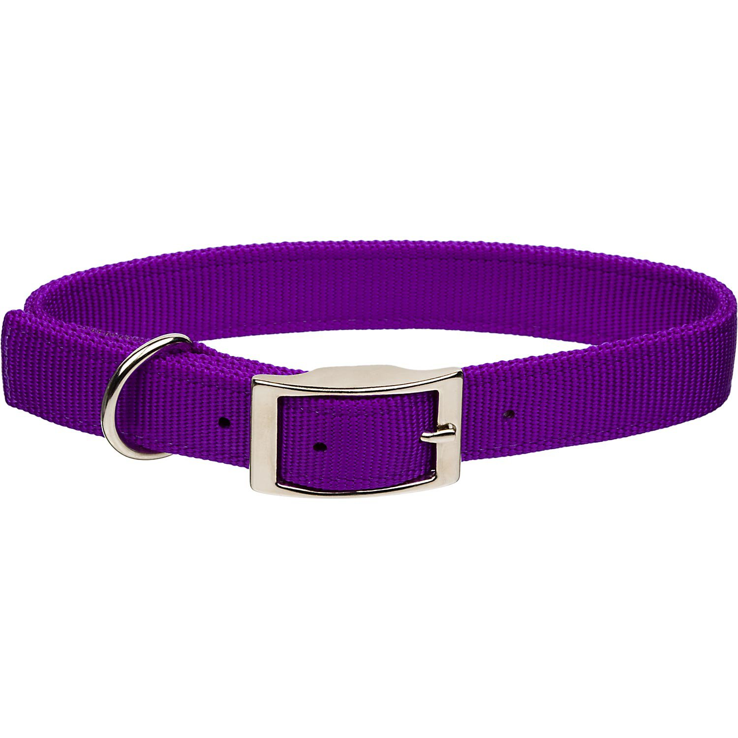 Coastal Pet Metal Buckle Double Ply Nylon Personalized Dog Collar In Purple Petco