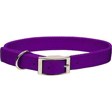 Coastal Pet Metal Buckle Double Ply Nylon Personalized Dog Collar in Purple