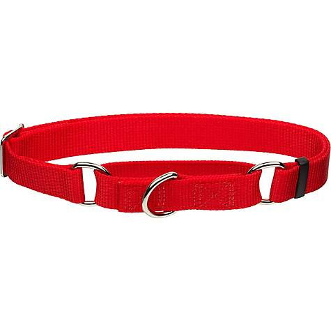 Coastal Pet No Slip Personalized Dog Collar In Red 1 Width