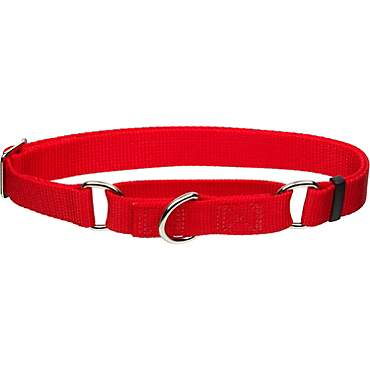 Coastal Pet No! Slip Personalized Dog Collar in Red