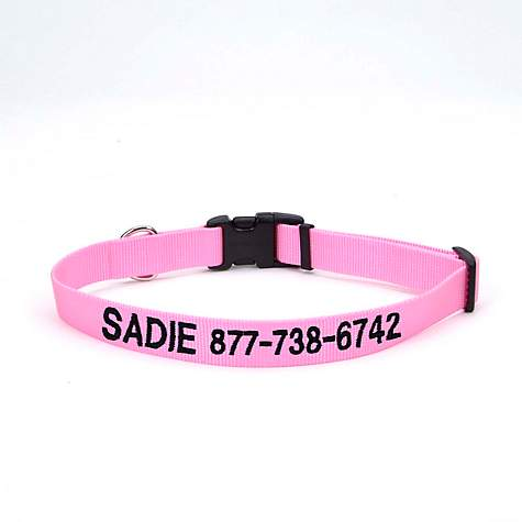 Coastal Pet Nylon Adjustable Personalized Dog Collar in Bright Pink
