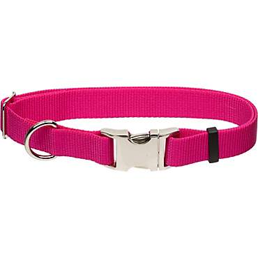 Coastal Pet Metal Buckle Nylon Adjustable Personalized Dog Collar in Pink Flamingo