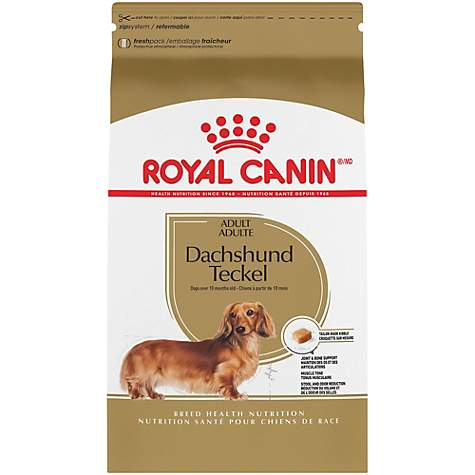 Royal Canin Breed Health Nutrition Dachshund Adult Dry Dog Food