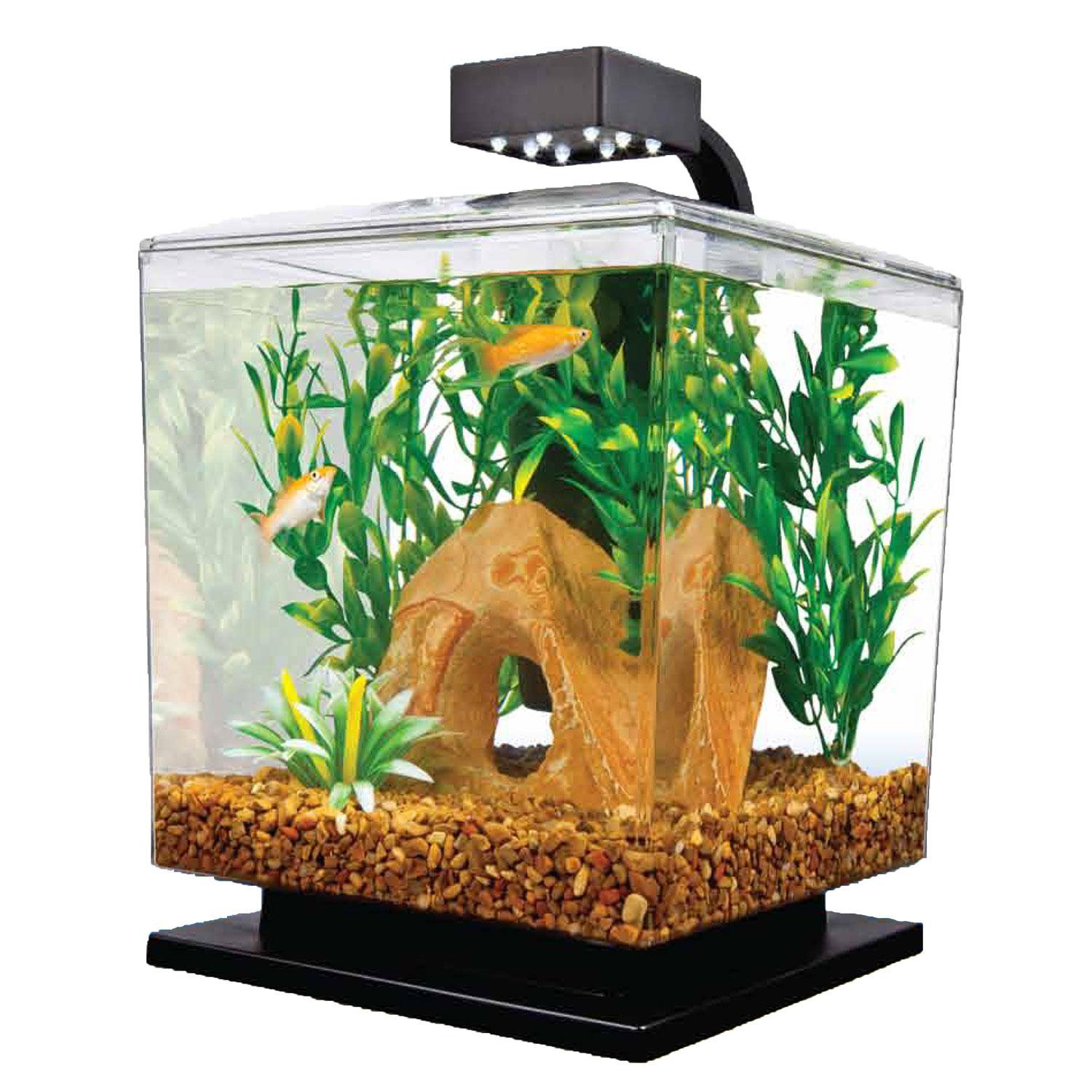 Aquarium fish tank starter kit - Tetra 1 5 Gallon Led Desktop Aquarium Kit