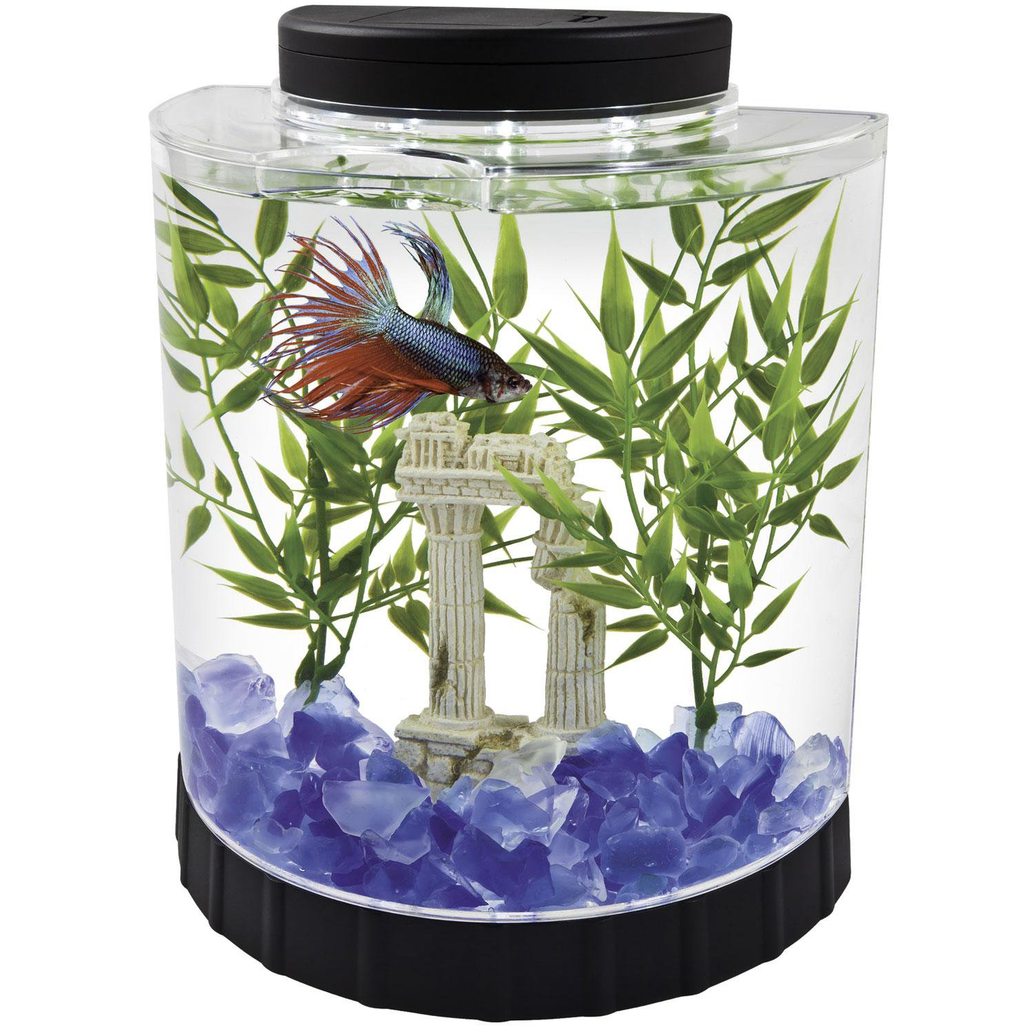 Fish Aquarium Rates In Delhi - Globe aquarium fish tank tetra 1 gallon led half moon betta kit