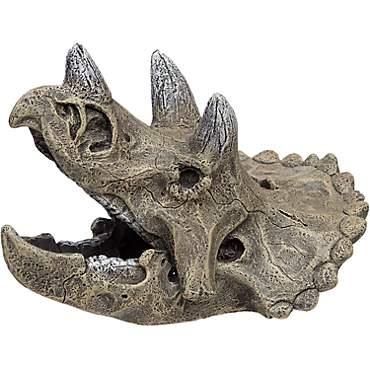 Blue Ribbon Small Triceratops Skull Aquarium Ornament