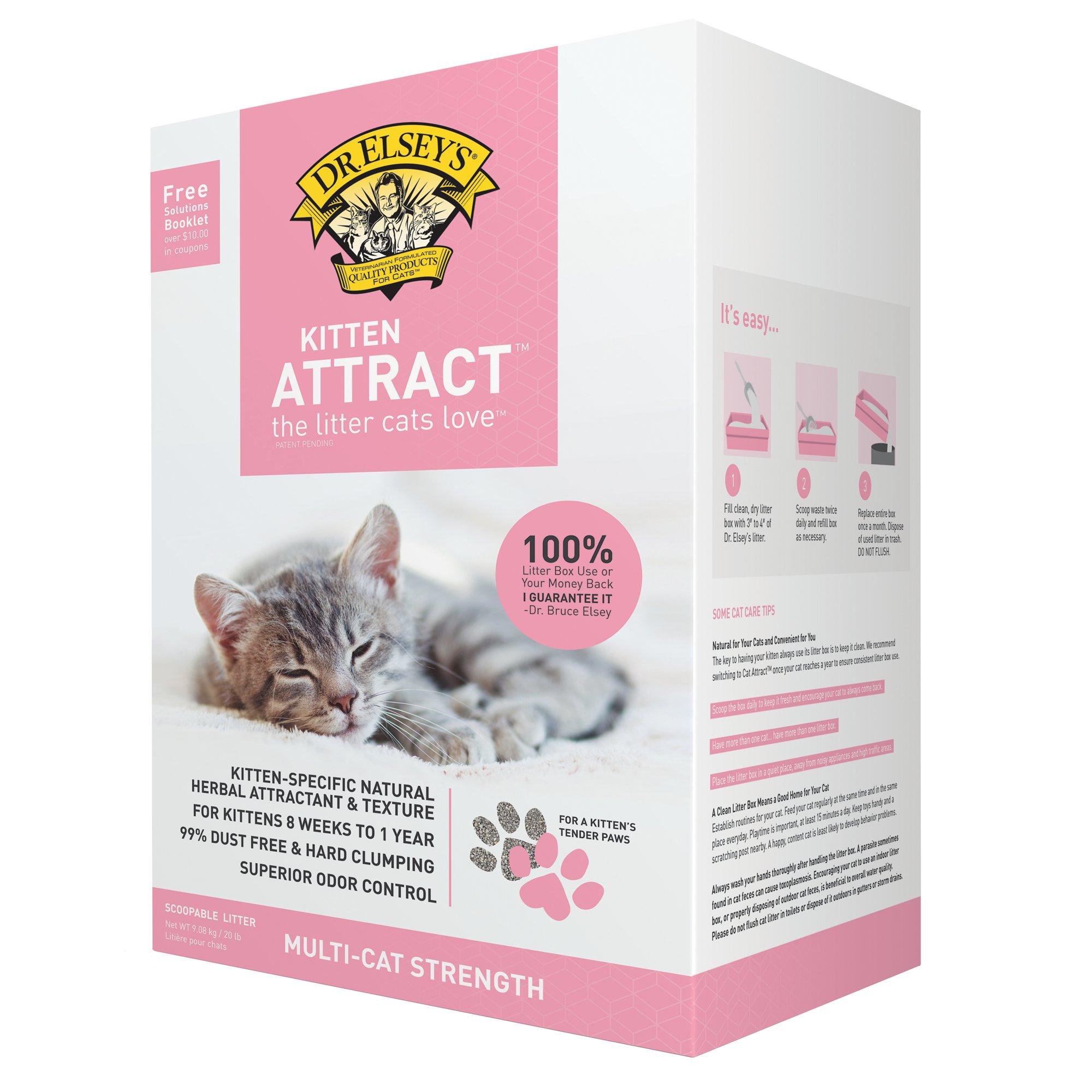 All Natural Wet Kitten Food