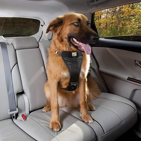 Kurgo Black Tru Fit Crash Tested Dog Car Harness