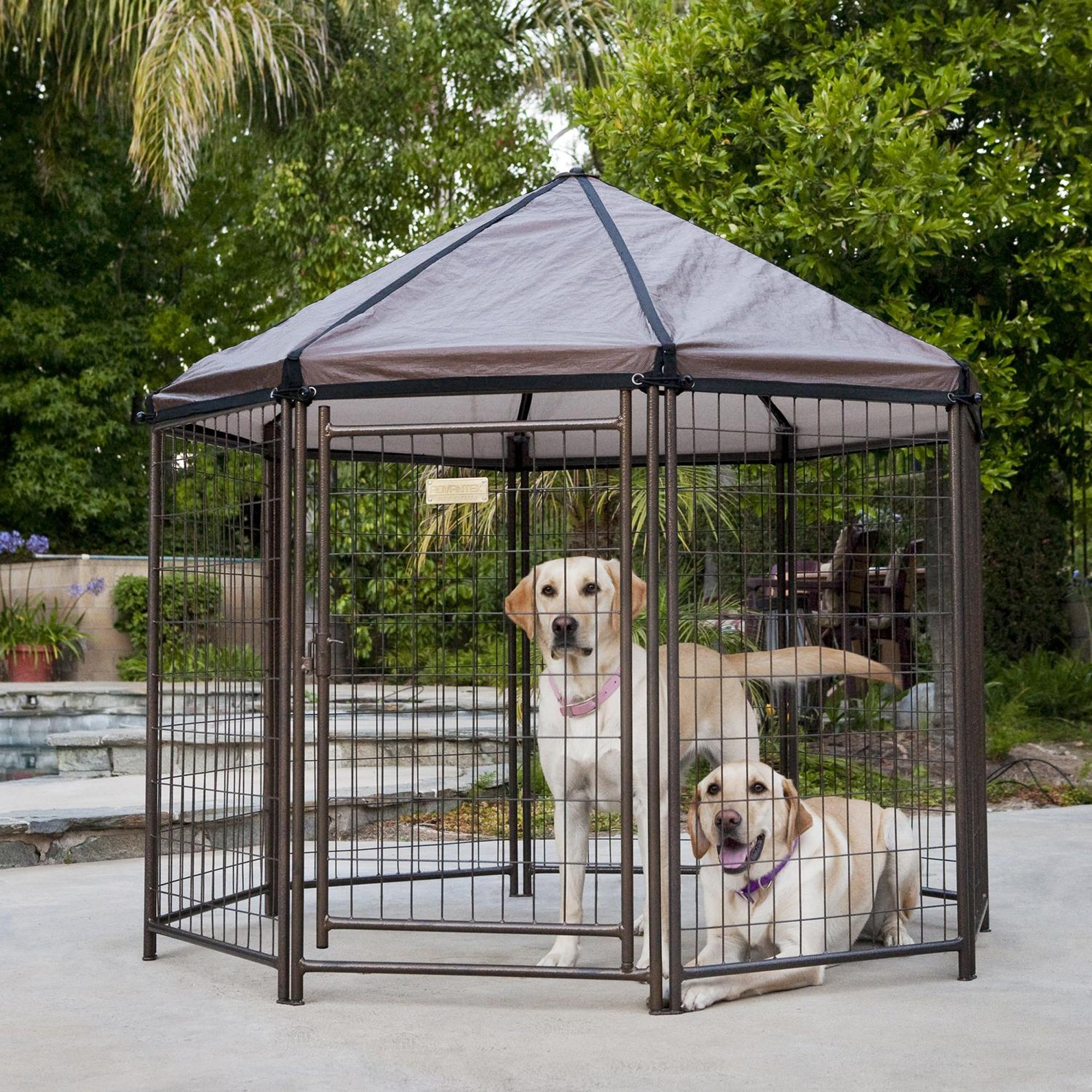 Outdoor Dog Kennel Advantek Pet Gazebo Mo...