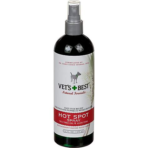 Best Anti Itch For Dogs