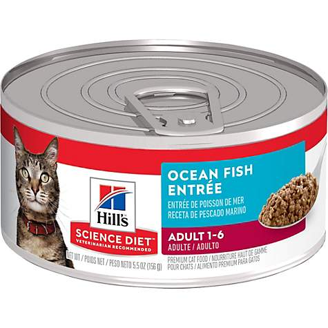 Hills Science Diet Adult Ocean Fish Entree Canned Cat Food