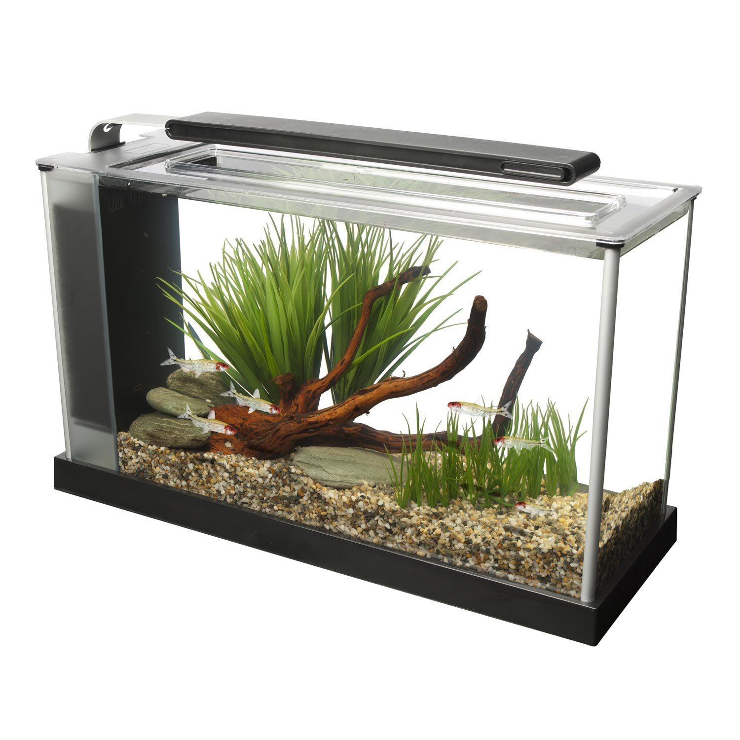 All glass aquarium fish tank - Fluval Spec V Aquarium Kit In Black