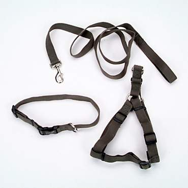 Coastal Pet New Earth 3-Piece Soy Dog Leash Harness and Collar Bundle in Dark Green