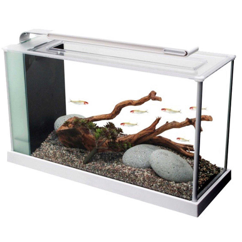 Fluval spec v aquarium kit in white petco for Petco small fish tank
