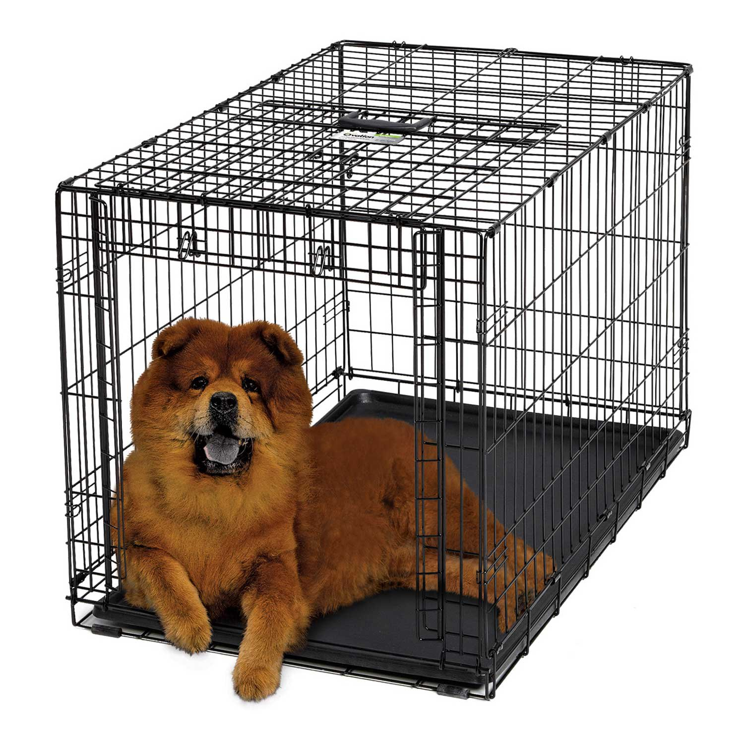 midwest ovation single door folding dog crate - Midwest Crates
