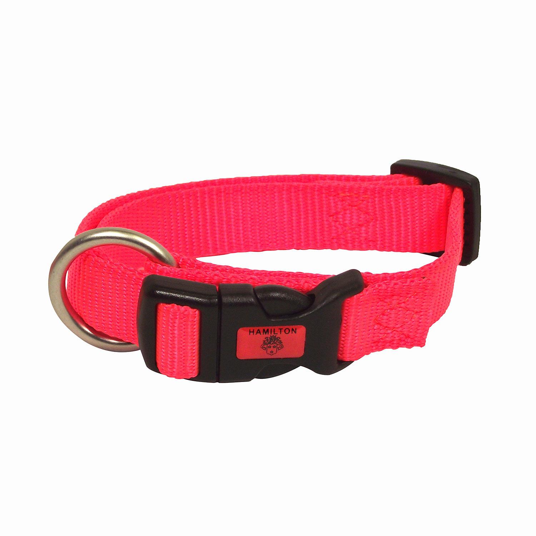 Hamilton Adjustable Nylon Dog Collar In Orange Small 8 14 L X 5/8 W