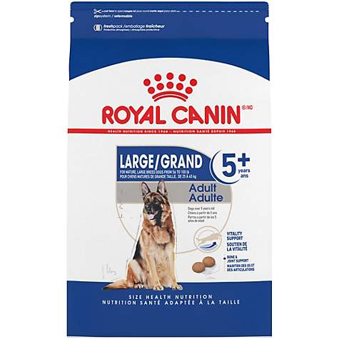 Royal Canin Size Health Nutrition Maxi Adult 5+ Dry Dog Food
