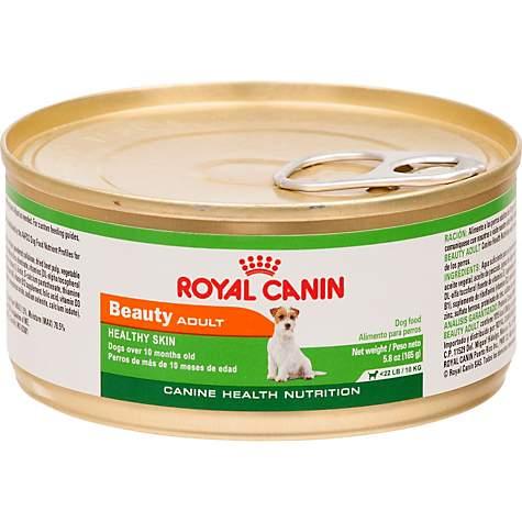 royal canin canned dog food