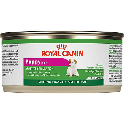 Royal Canin Canine Health Nutritionpuppy In Gel Wet Dog Food Petco