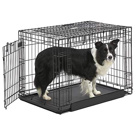 Midwest Ovation Trainer Double Door Dog Crate Petco