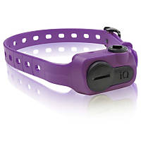 Dogtra iQ No Bark Dog Collar in Purple