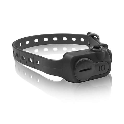 Dogtra iQ No Bark Dog Collar in Black