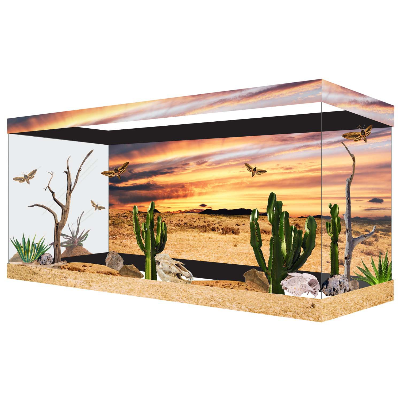 Habitat wraps desert sunset reusable glass tank background for Petco small fish tank