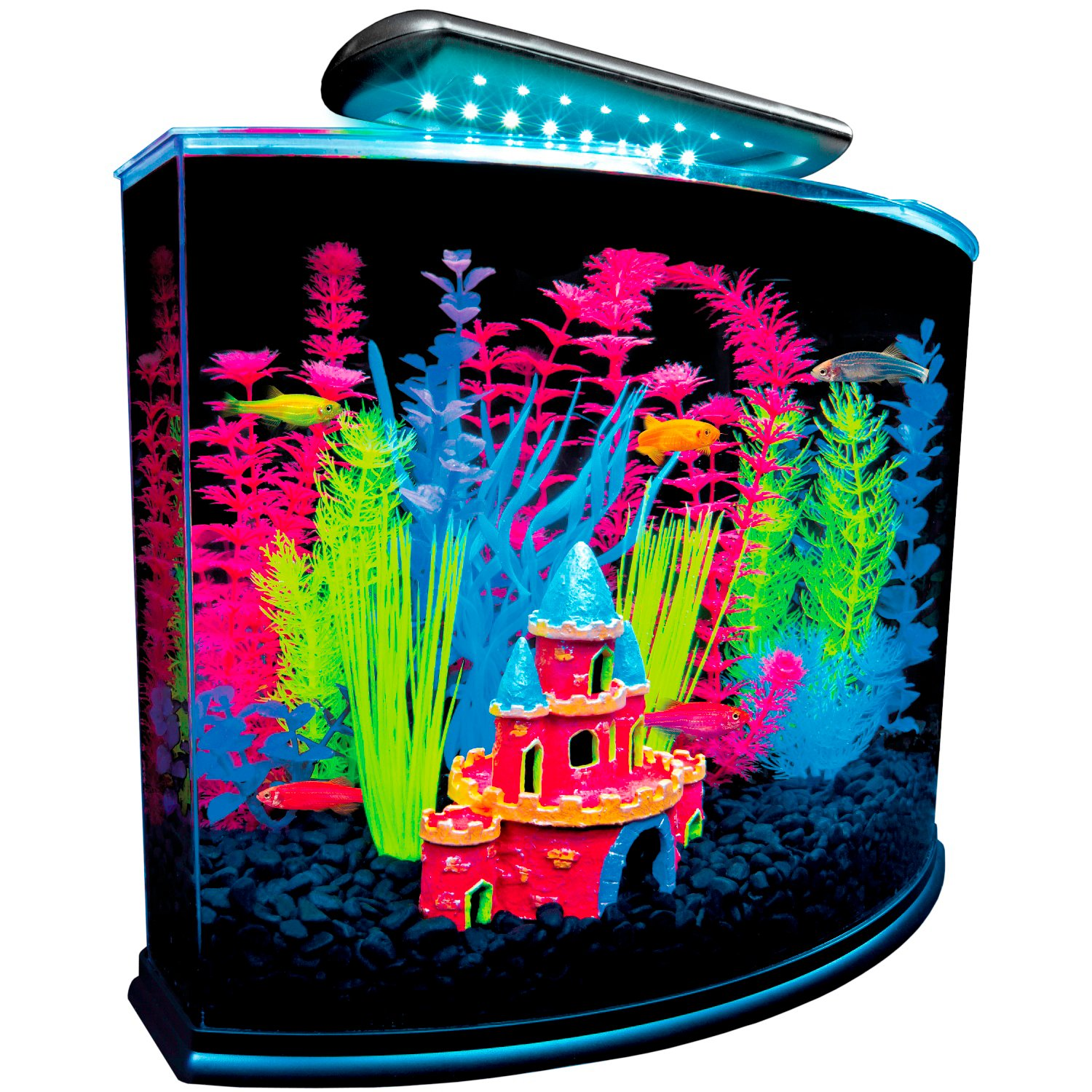 Glofish 5 Gallon Crescent Aquarium Kit Petco