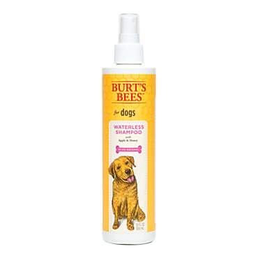 Burt's Bees Deodorizing Waterless Shampoo