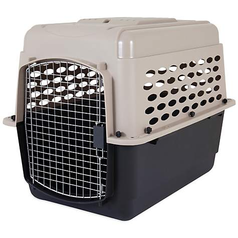 Petmate Vari Dog Kennel Petco