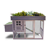 Precision Pet Garden Top Chicken Coop