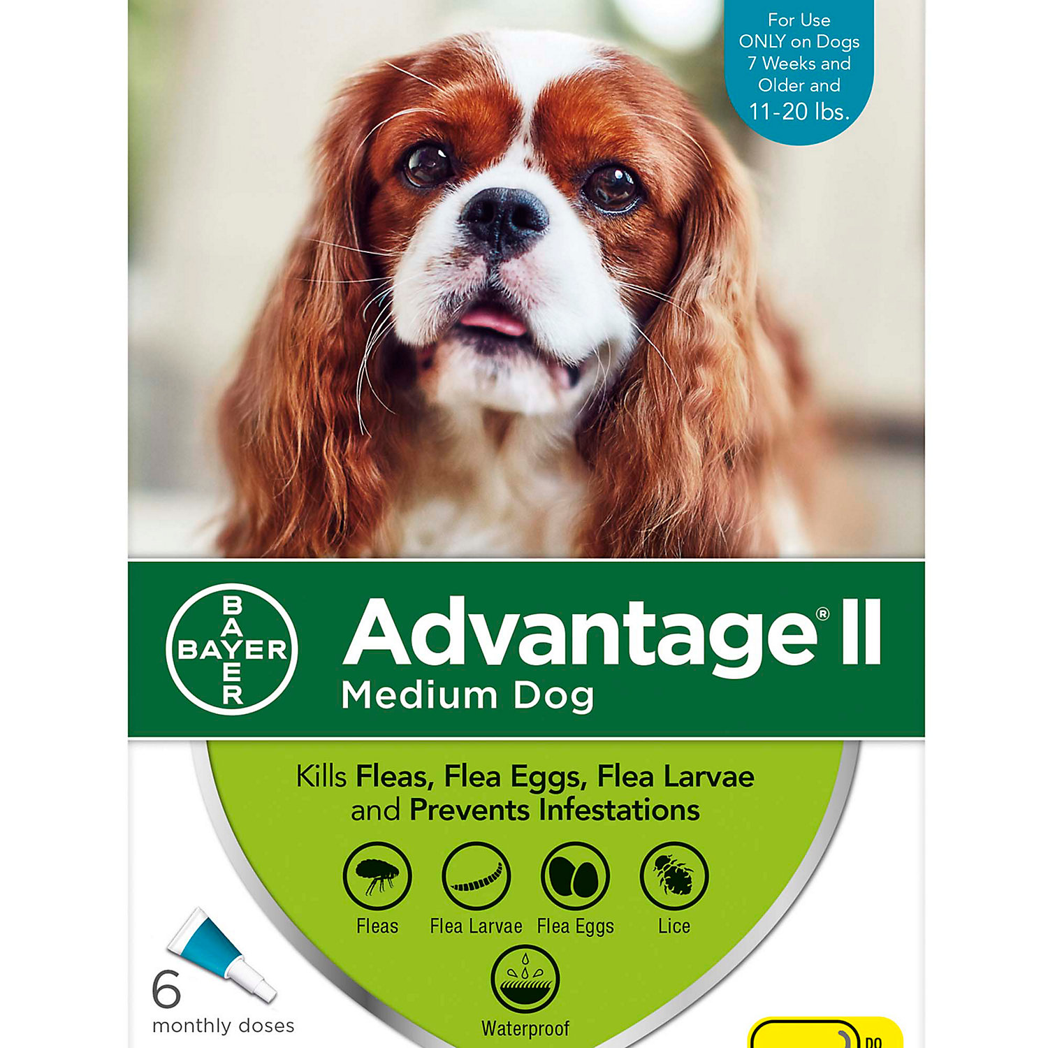 Advantage Ii Once A Month Topical Flea Treatment For Dogs Puppies For Medium Dogs 11 20 Lbs.