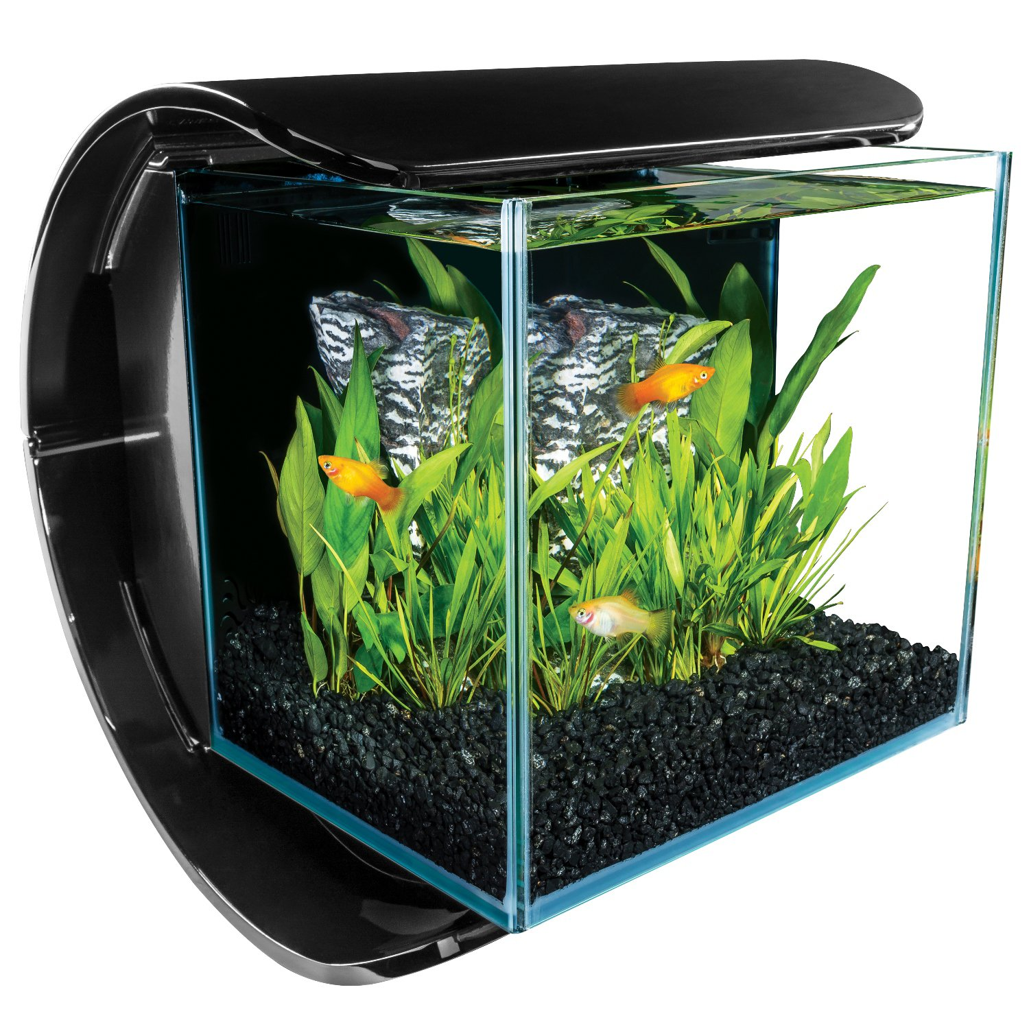 Marineland silhouette glass 3 gallon led aquarium kit petco for Aquarium boule 20 litres
