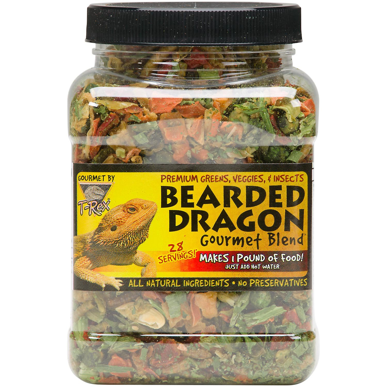 Bearded Dragon Dry Cat Food