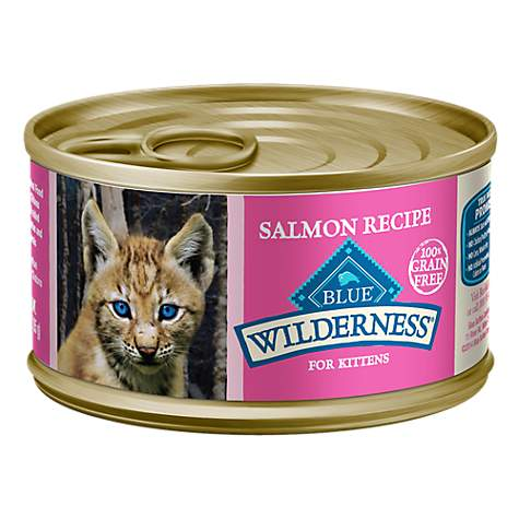 Canned Cat Food Sitting Out