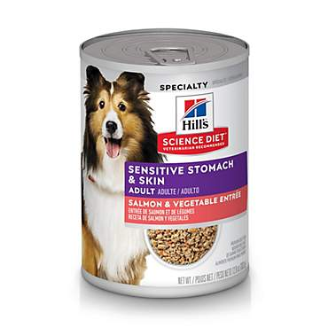 Hill's Science Diet Adult Sensitive Stomach & Skin Salmon & Vegetable Wet Dog Food