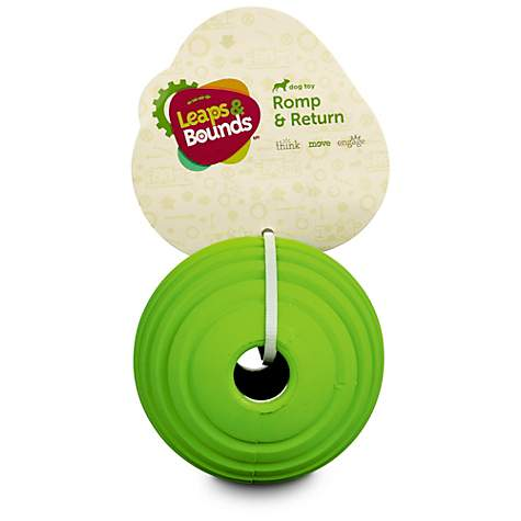 Leaps & Bounds Rubber Ball Dog Toy