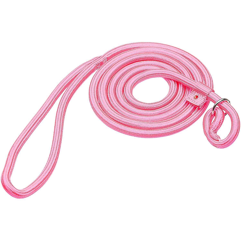 Hamilton Round Quick Pink Braid Dog Collar Leash Combo 6 L X 5/16 W