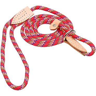 Hamilton London Quick Red Confetti Dog Collar & Leash Combo