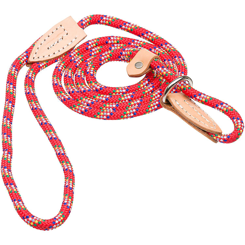 Hamilton London Quick Red Confetti Dog Collar Leash Combo 6 L X 3/8 W