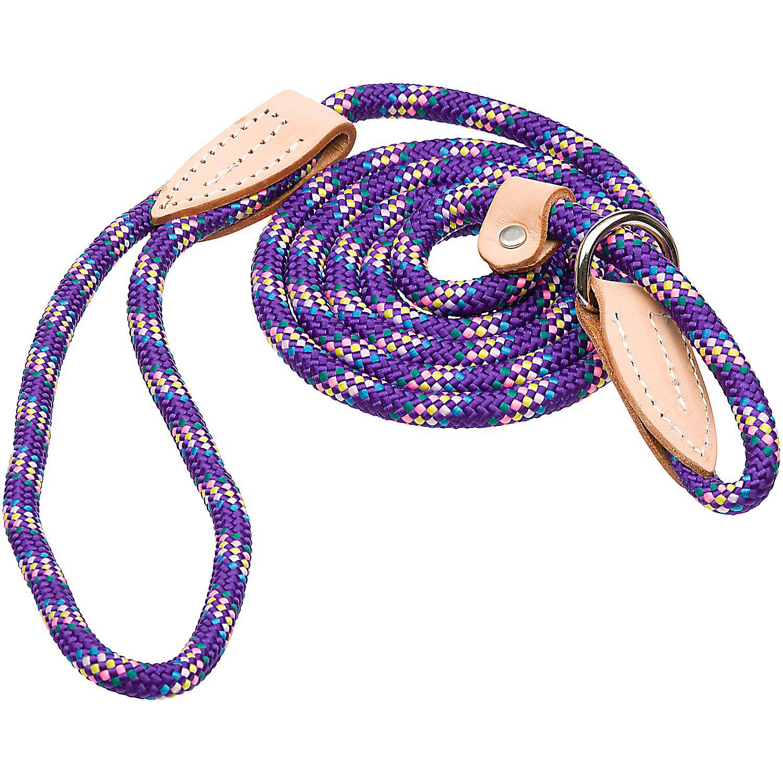 Hamilton London Quick Purple Confetti Dog Collar Leash Combo 6 L X 3/8 W