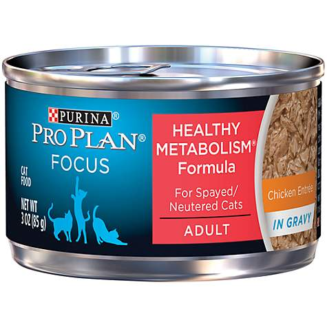 Pro Plan Focus Balanced Energy Canned Chicken Cat Food