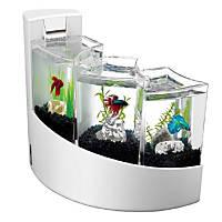 Aqueon Betta Falls Aquarium Kit in White