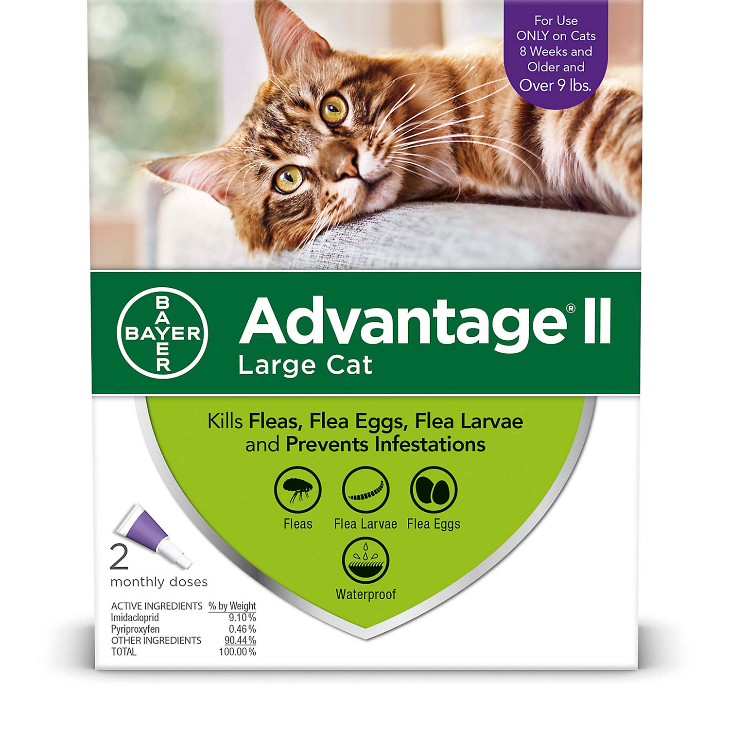 Advantage Ii Once A Month Topical Large Cat Flea Treatment 2 Mo. Over 9 Lbs.