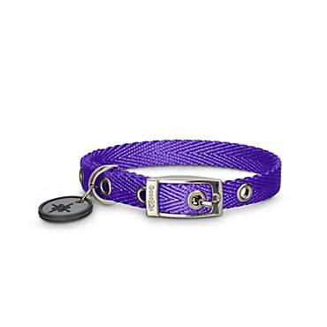 Good2Go Buckle Purple Nylon Dog Collar
